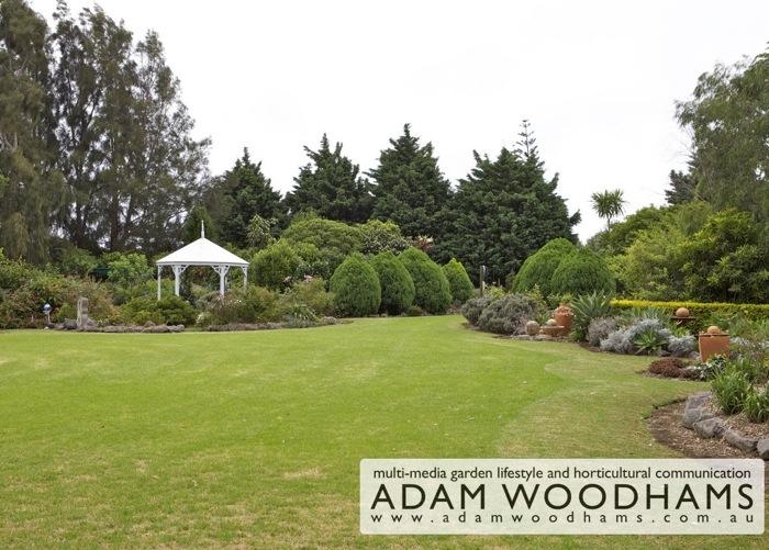 Norfolk Island Garden