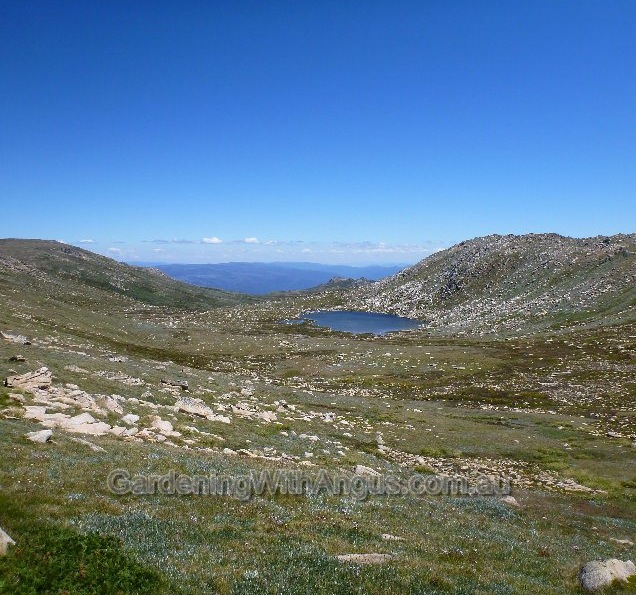 Glacier-formed lake near Mt Kosciuszko