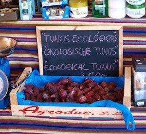 Tuna for sale in Gran Canaria