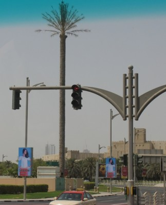 Dubai clever palm-style phone tower