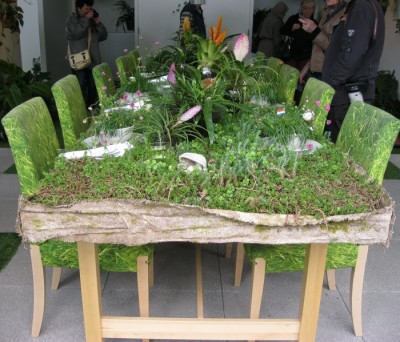 Green Living Lounge and Dining Room with succulents, ferns & organic food on the menu
