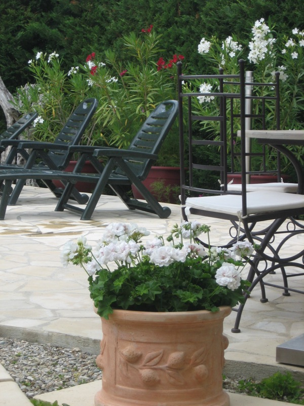 Cool and elegant: white Pelargoniun ties in with the table and chairs
