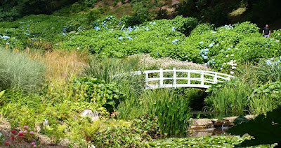 Giverny inspired bridge at Trebah Garden