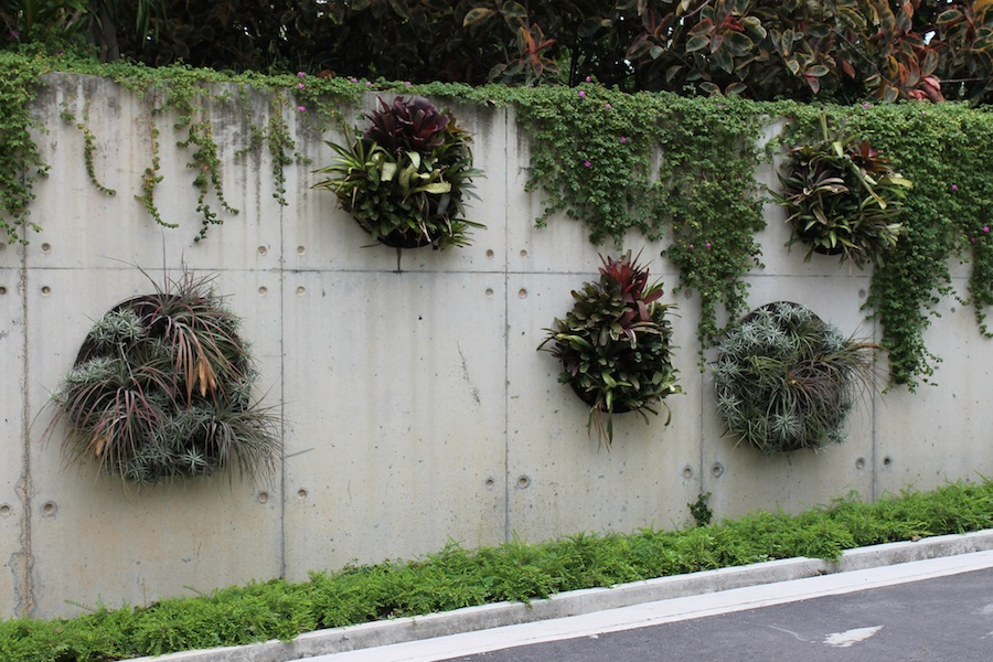 Round vertical gardens provide interest and greenery