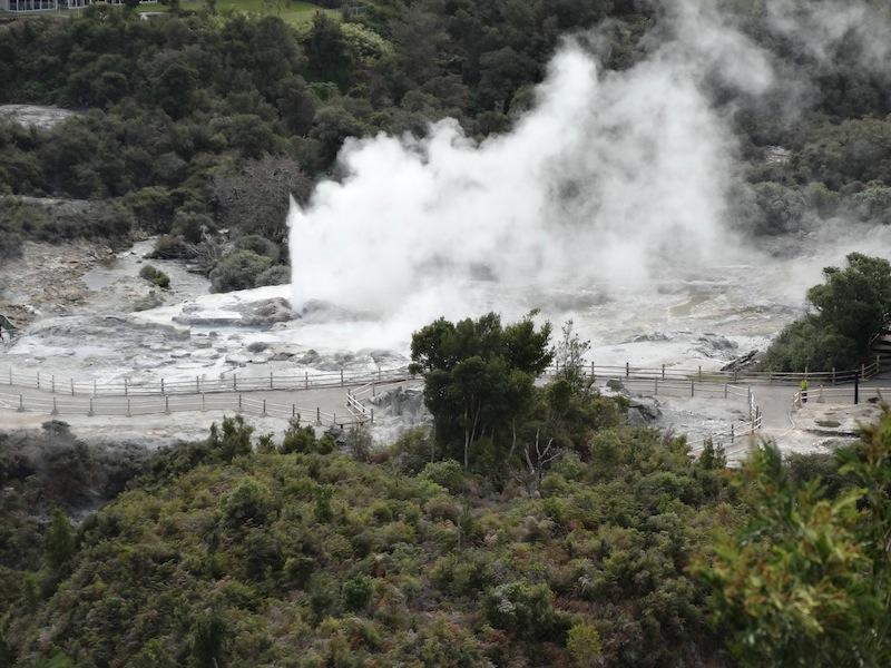 Geysers at Rotorua