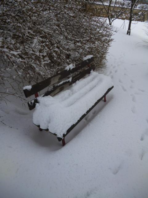 It thawed when we left!