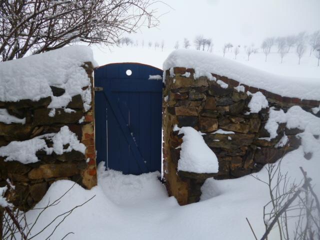 Our garden gate
