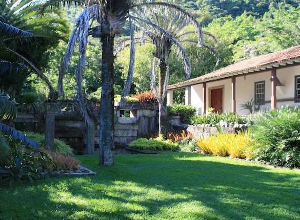 Roberto Burle Marx S Private Sitio Garden Travel Hub