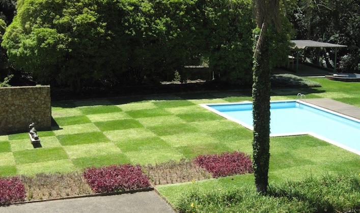 Burle-Marx-Edmundo-Cavanelas-garden-checkerboard-lawn