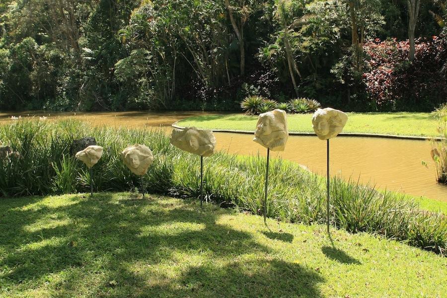 Burle Marx - Edmundo Cavanelas garden pond