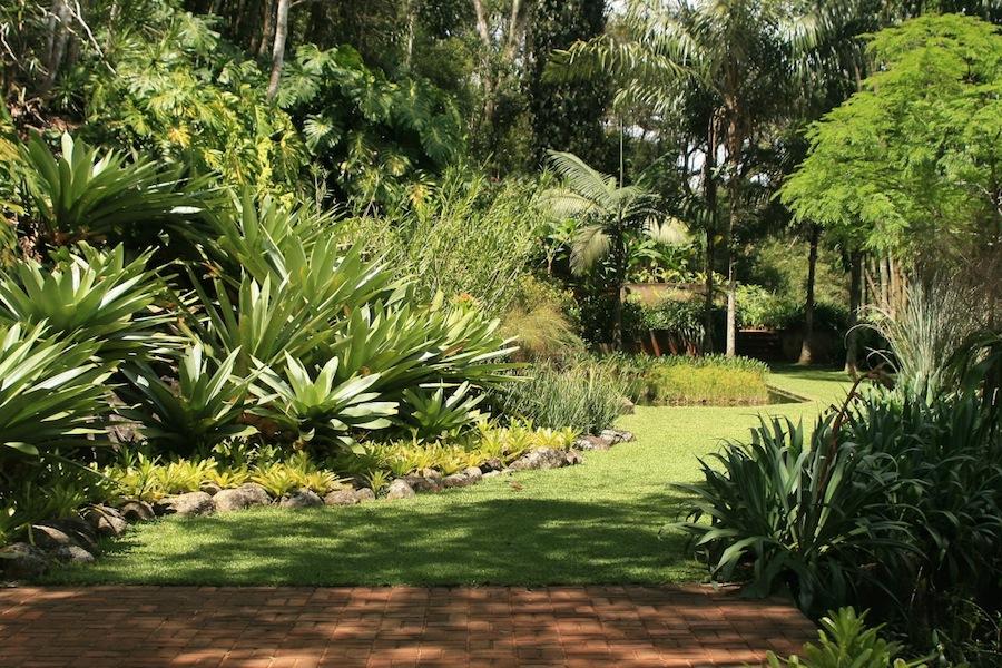 Burle Marx - Raul De Souza Martins garden