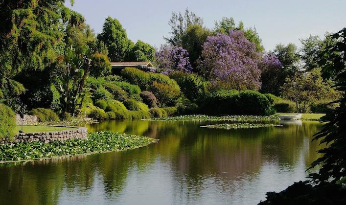 Lake-at-the-Allende-garden1