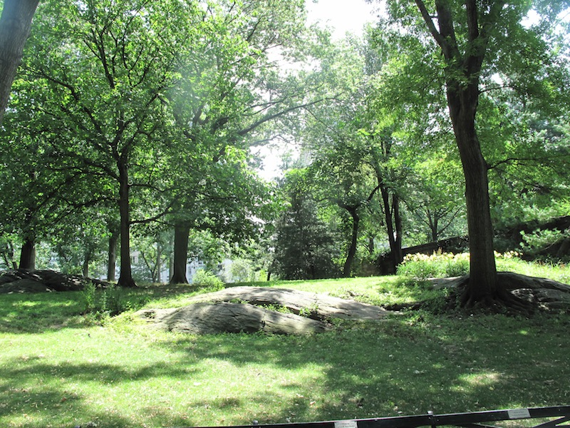 NYC Central Park - spacious and shady but still hot, hot hot.