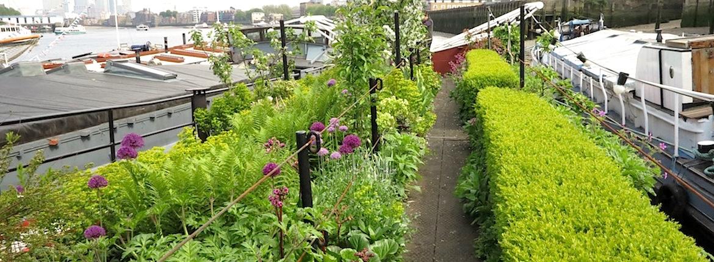 The Floating Gardens Of London Garden Travel Hub