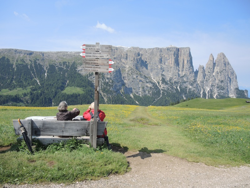 Dolomites meadows - spectacular scenery