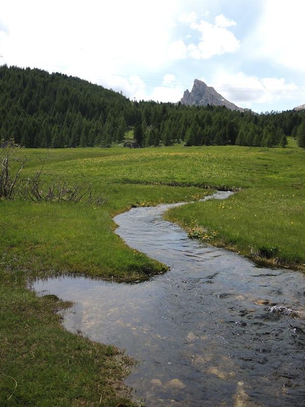 Riparian zone Dolomites