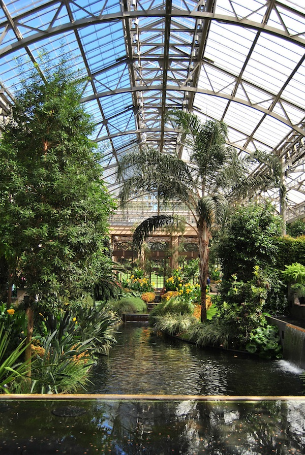 Stunning display inside the conservatory with humidifying water. Longwood Gardens