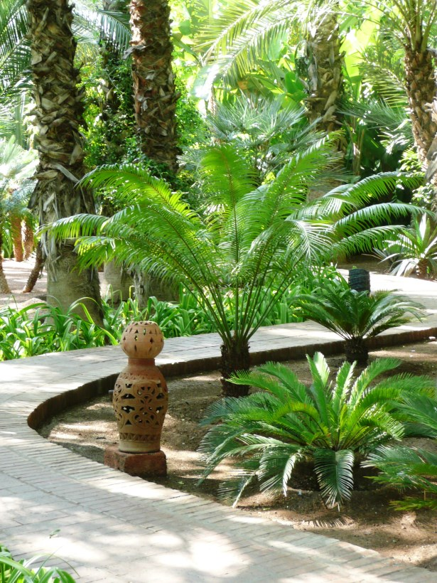 Jardin Majorelle Sinuous path through the palm collection