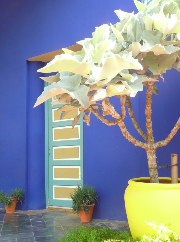 Jardin Majorelle - Majorelle blue with yellow pot