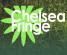 Chelsea Fringe