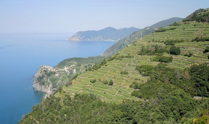 51-Cinque-Terre-Italy1