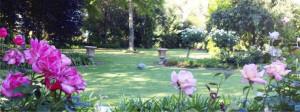 7. Horder and Salvestrin garden Griffith Festival of Gardens 2014