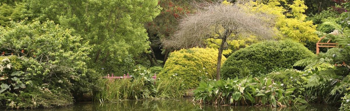 galston open gardens  nsw