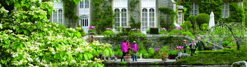 Panorama-Garden-Image