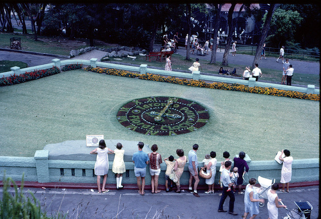 Taronga Park Floral Clock in Sydney, Australia 1967. Photo by Ken Hodge