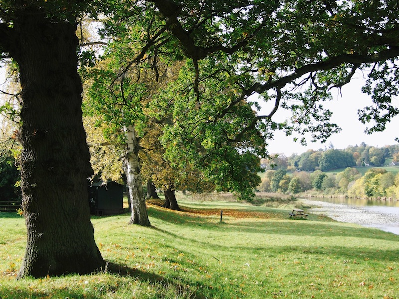 Abbotsford estate grounds. Photo courtesy The Abbotsford Trust