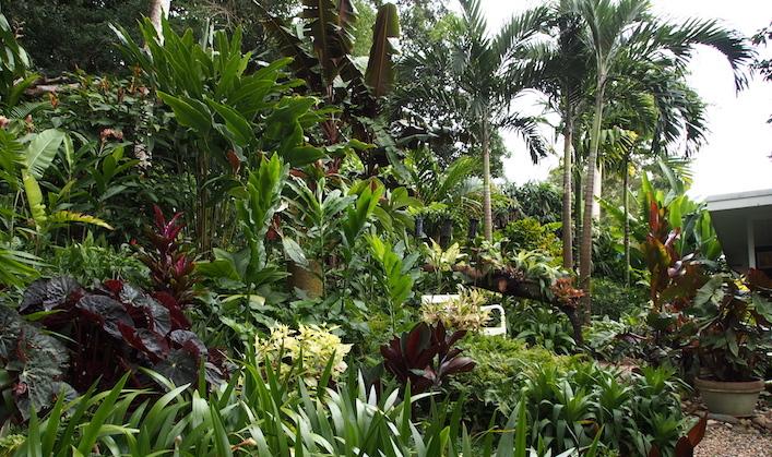 Tabu B&B garden