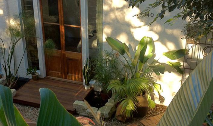 bondi-beach-eco-garden-front-garden