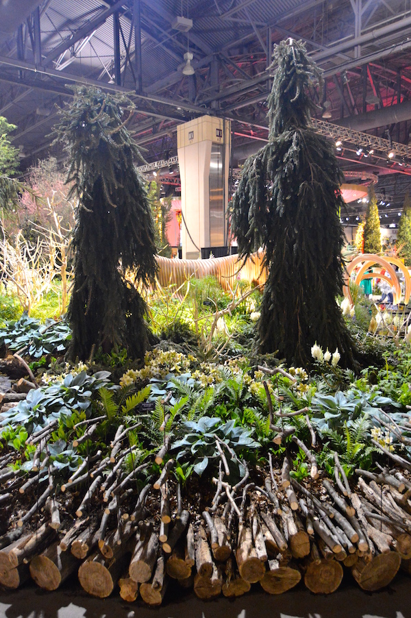 Carefully chosen human-form conifers for 'A Maleficent View' Design Leon Kluge. Best in Show Landscape at Philadelphia Flower Show 2015