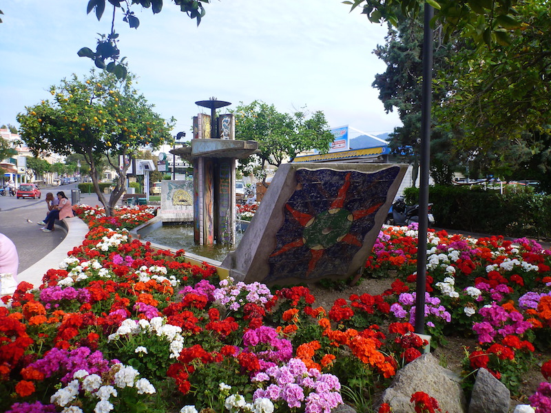 Colourful annuals on the streets of Ischia, Italy