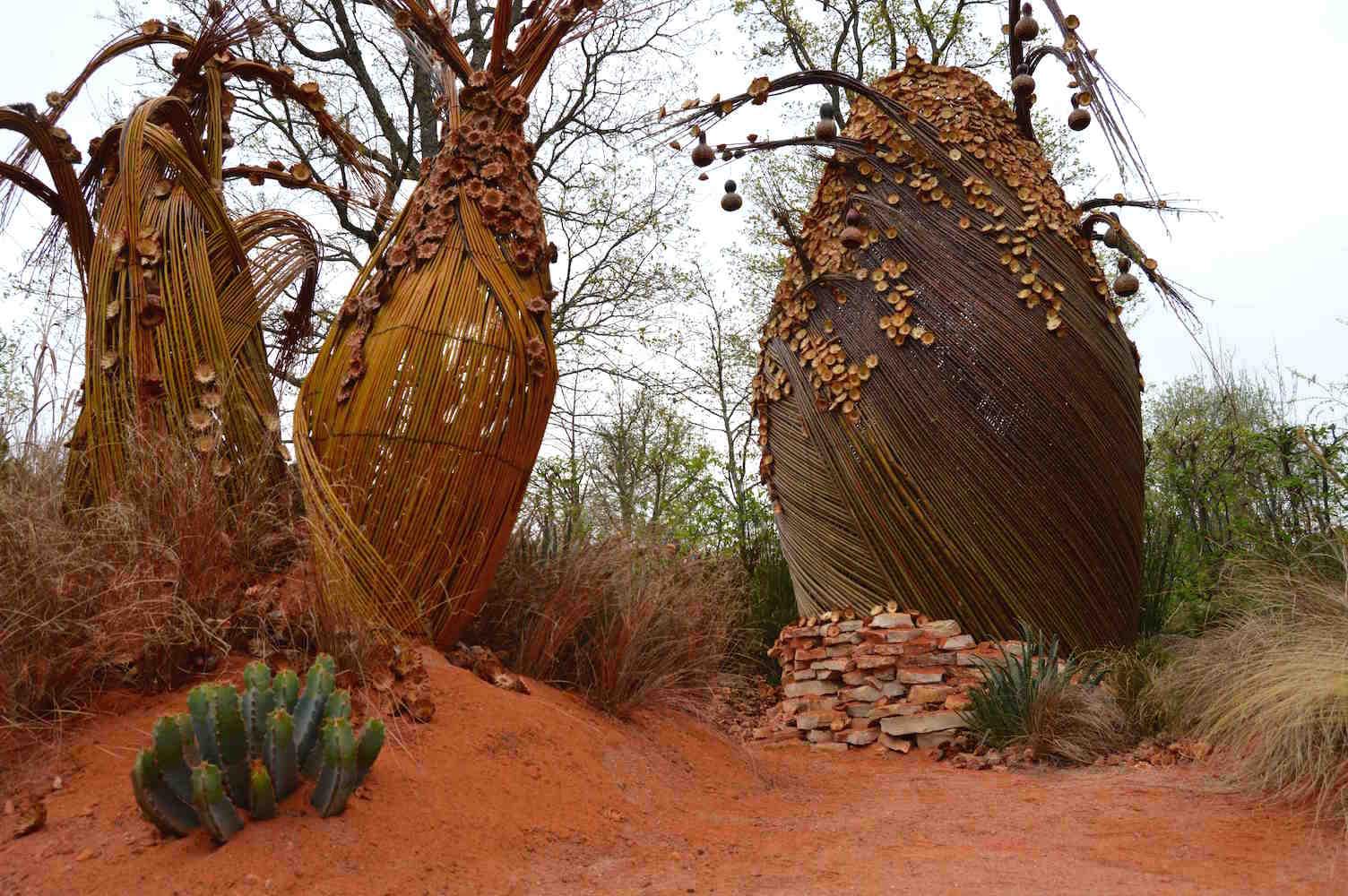 Adenium and baobab scultpures in 'African Kitchen' garden, design Leon Kluge