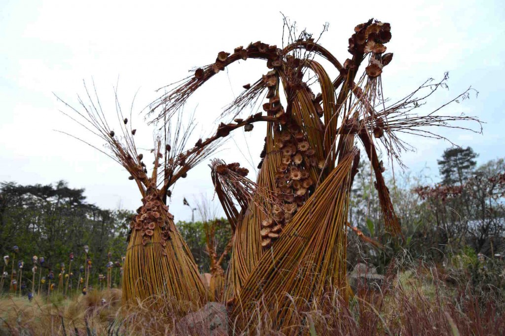 Adenium sculptures and dry grasses in 'African Kitchen' garden, design Leon Kluge