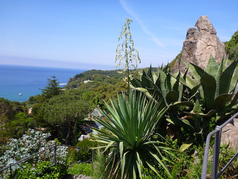 The Hill. Garden at La Mortella, Ischia, Italy