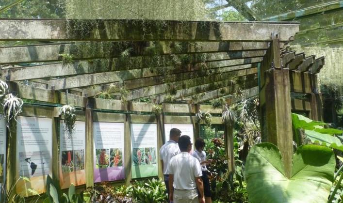 Singapore Botanic Gardens 5 Things To Love Garden