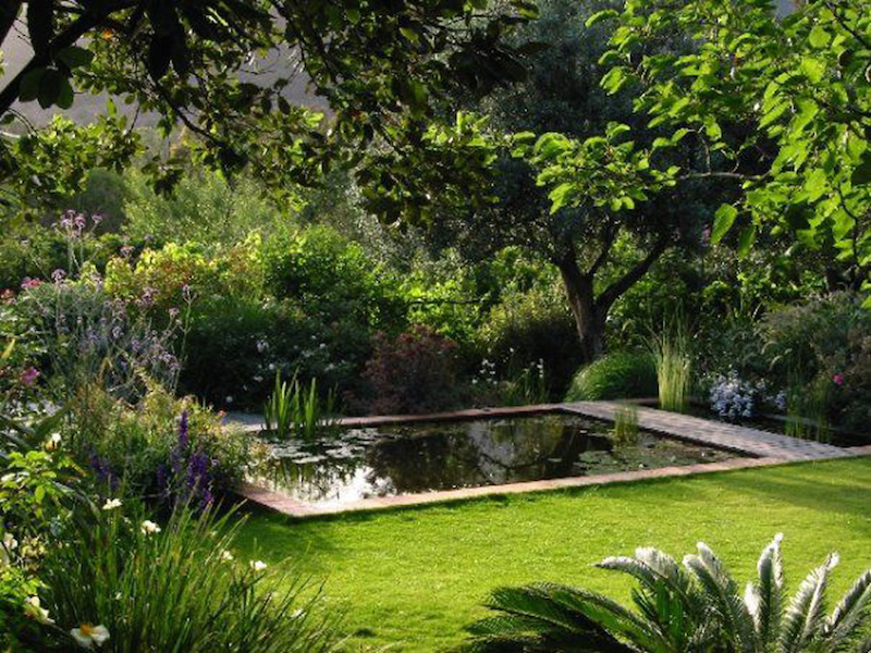 The aquatic garden Photo & design Maurizio Usai