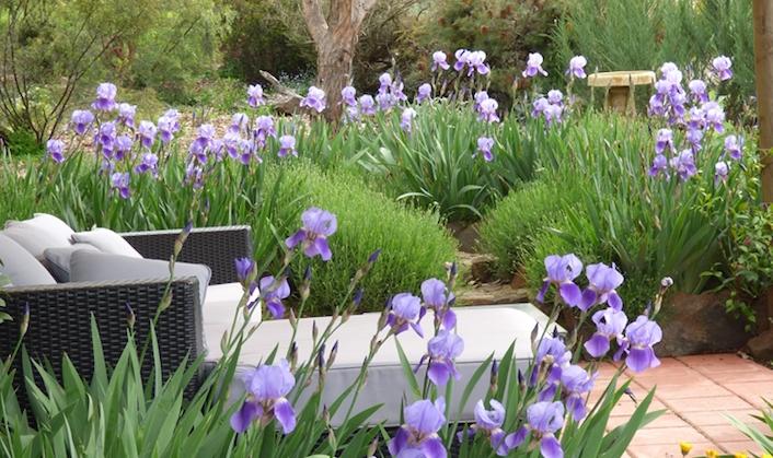 Casa Della-Pace Crookwell Garden Festival featured