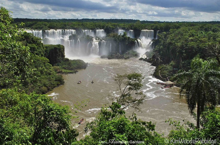 Iguazu Falls. Photo courtesy Kim Woods Rabbidge
