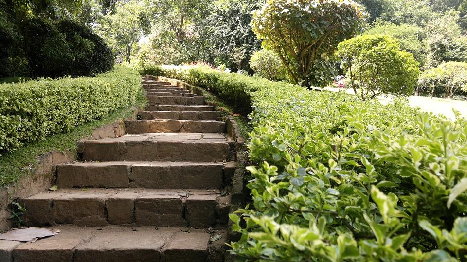 Garden travel guide to sri lanka for Home garden design in sri lanka
