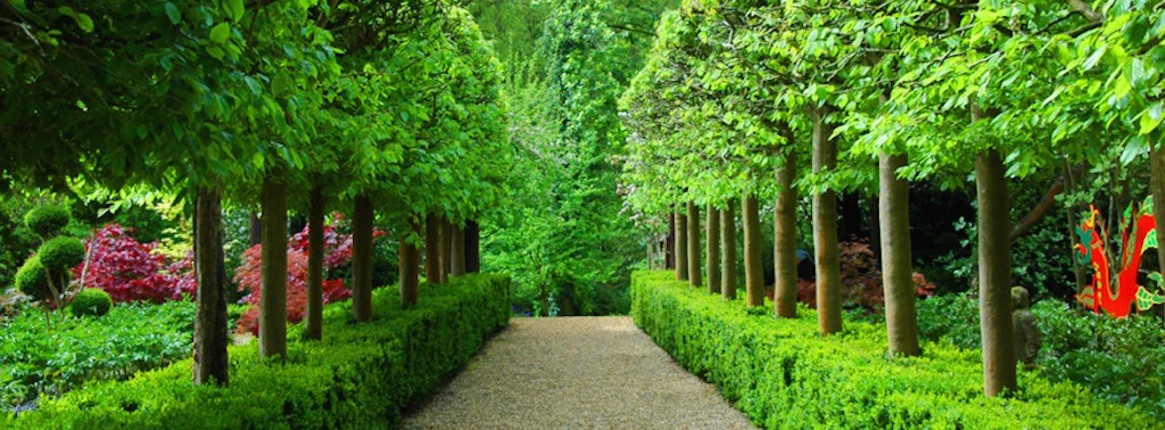 The Great Gardens Of England And Chelsea Flower Show