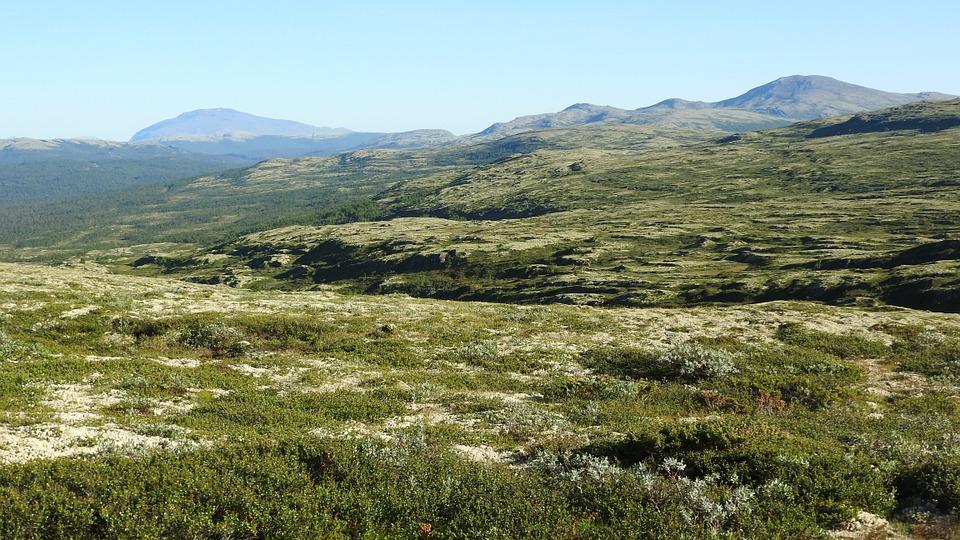 Natural landscape in Sandbekkdalen, Noway