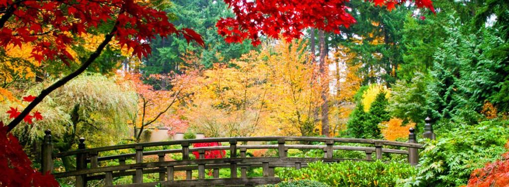 Japan-Garden-Tour-Main-Image-1024x377
