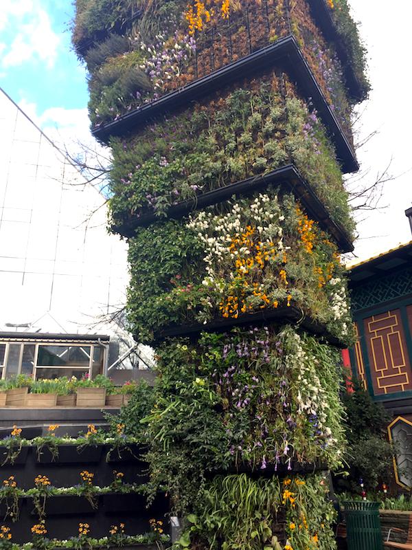 Spring bulb greenwall, Tivoli Garden, Copenhagen