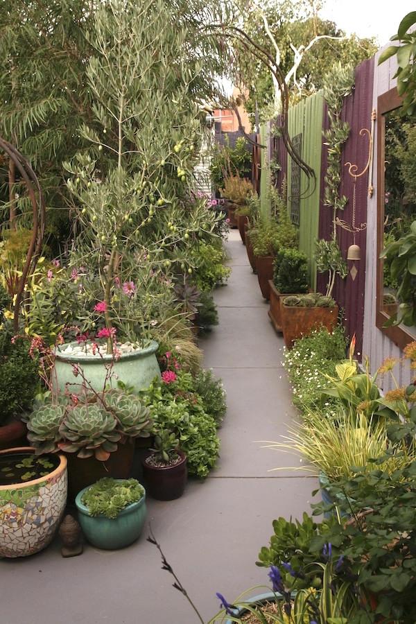 City Garden Design Ideas: Melbourne City Garden. Design Jennie Woodruff