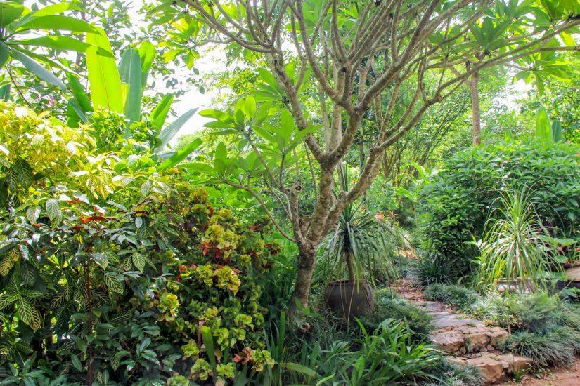 Pha Tad Ke Botanical Garden, Luang Prabang, Laos. Photo Leila Wise