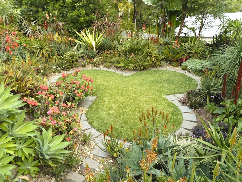 Brisbane aloe garden design michael dent garden travel hub for Garden design brisbane