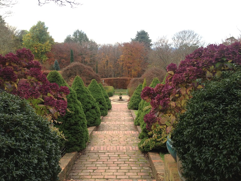 Cloudehill garden in autumn. Photo Phil Withers